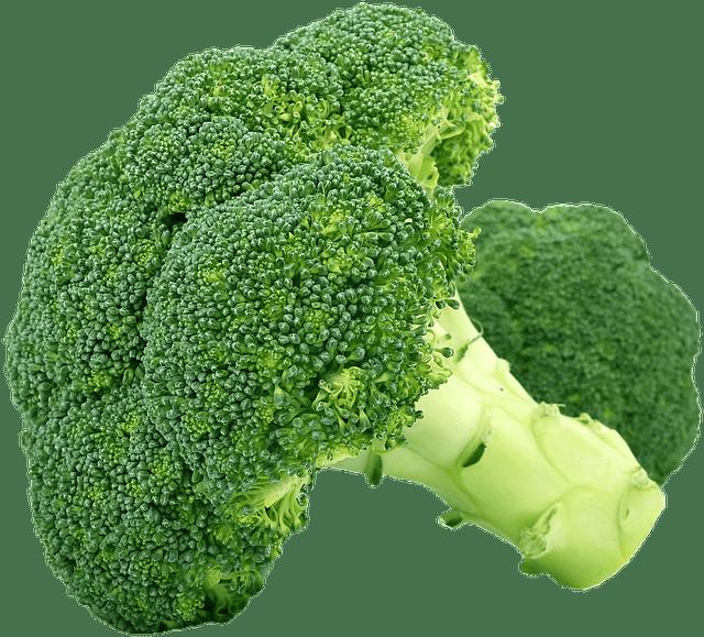 Morceaux de brocoli pour expliquer sa haute teneur en nitrate