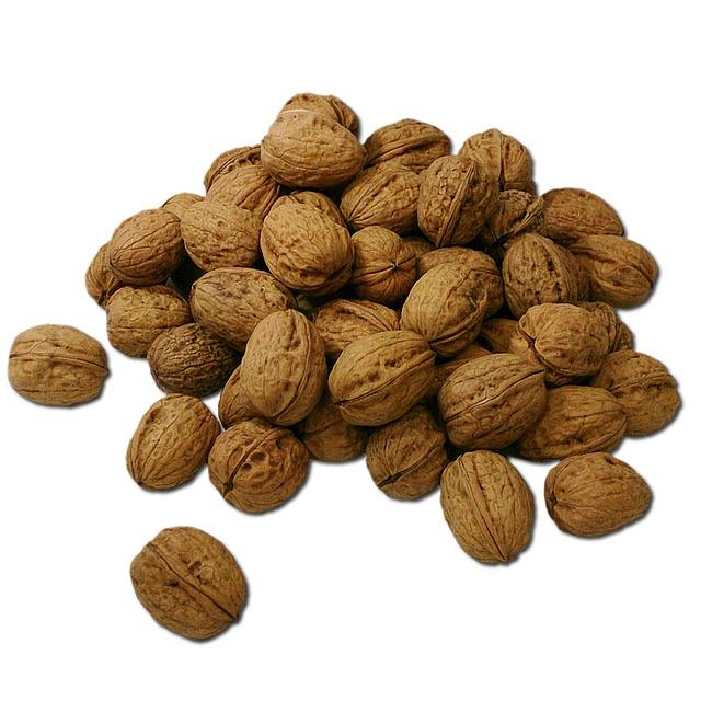 L'oméga 3 et l'oméga 6 sont des acides gras essentiels. La noix de Grenoble en contient.